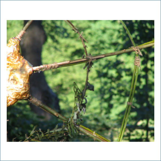 Dasi-Grohmann-Natur&Kunst12