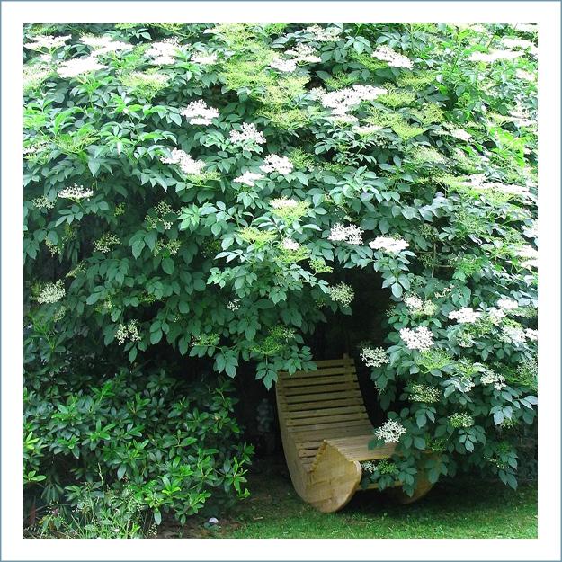 Dasi-Grohmann-Privat-Gartengestaltung-193